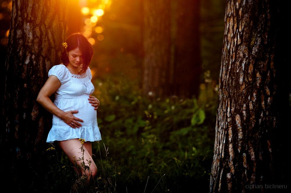 Babybauch Fotos Erfurt am Sonnenuntergang im Thüringen Wald