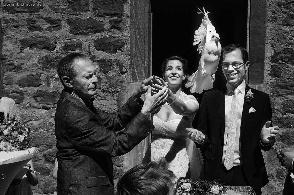 Hochzeitsfotos in Miltenberg 11