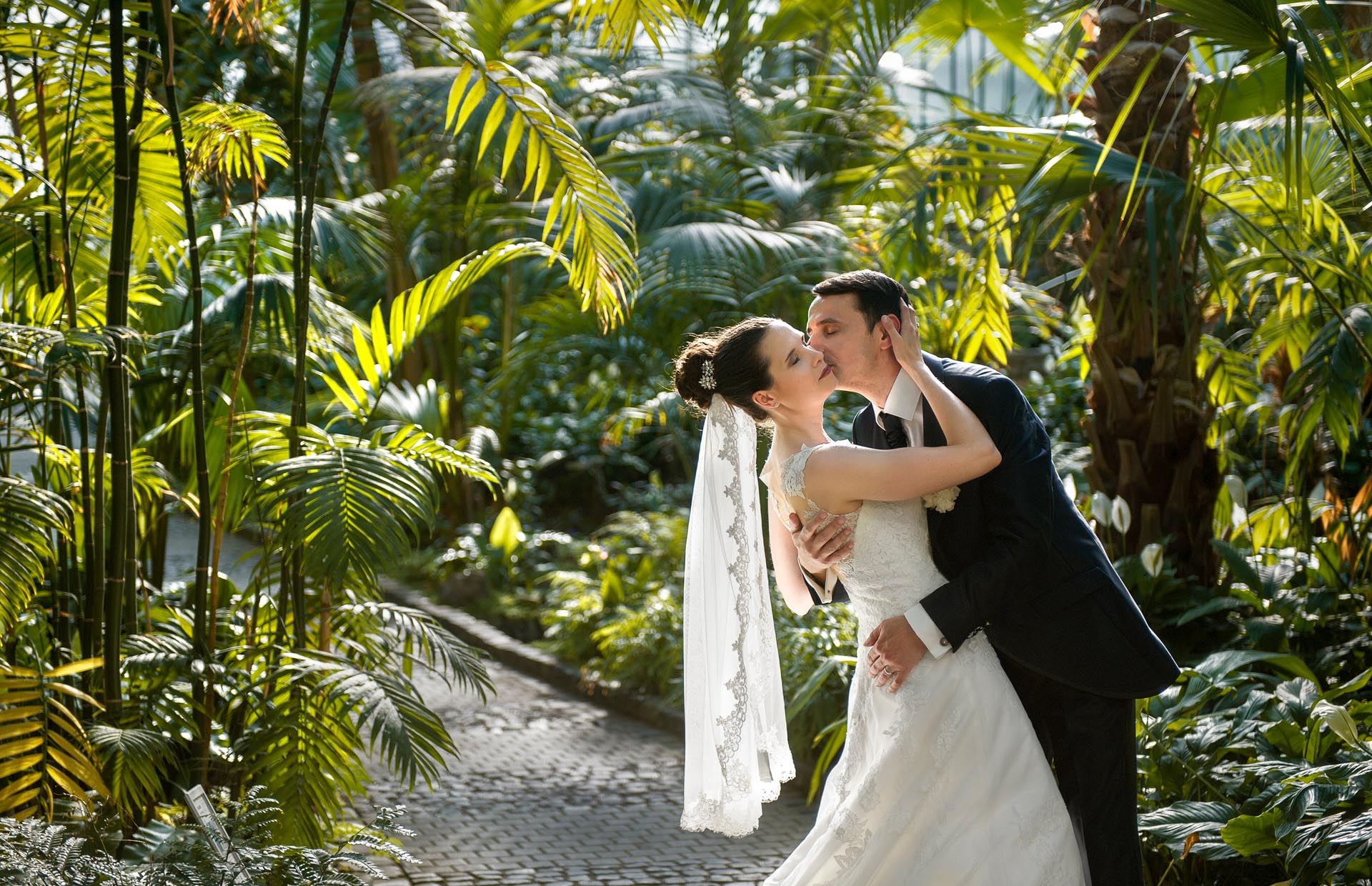 After Wedding Shooting im Botanischen Garten, Palmengarten Frankfurt